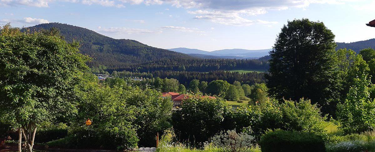Ferienwohnung mit Hund ruhig-bodenmais im bayerischerwald